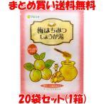 生姜 生姜湯 マルシマ 梅はちみつしょうが湯 48g(12g×4包)×20袋セット(1箱) まとめ買い送料無料