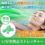 いびき防止 グッズ スージークール いびき対策 鼻呼吸 イビキ 鼻腔ストレッチャー 快眠 安眠グッズ スージー 男女兼用(メール便可)