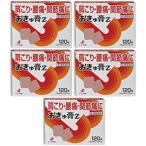 【送料無料】 おきゅ膏Z|120枚入×5個セット|第3類医薬品|ゼリア新薬