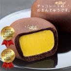 チョコレートまんじゅう 天満月 あまみつき 10個入り 個包装 創業1852年 水戸名菓 亀じるし