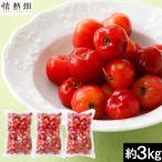 冷凍アセロラ果実 約3kg【送料無料】沖縄県産 天然ビタミンC 国産 スーパーフード