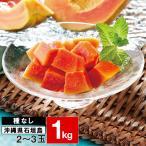 パパイヤ フルーツ 種なし 石垣珊瑚 1kg (2〜3玉) 送料無料 ギフト 果物 沖縄県 石垣島産