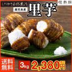 里芋 品種:クロガラ 鹿児島県垂水市産 3kg 送料無料 特別栽培 S〜Lサイズ