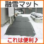 山清電気 融雪マット 玄関用 TYG-100-1 (寸法1000×960×t6 mm)【代引不可】