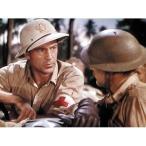 戦争映画パーフェクトコレクション 戦場の黙示録 DVD10枚セット - 映像と音の友社