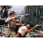 西部劇パーフェクトコレクション 西部の掠奪者 DVD10枚セット - 映像と音の友社