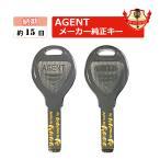 AGENT エージェント 鍵 送料無料 LSキー ディンプルキー 取替錠 レバーハンドル用 メーカー純正 合鍵 スペアキー spare key