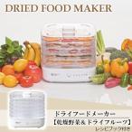 送料無料 乾燥野菜 干し野菜 ドライフルーツ ドライフードメーカー AFD-550