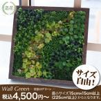 フェイクグリーン サイズ指定自由!壁掛けグリーン ウォールグリーン (人工 観葉植物 造花 光触媒 インテリア リアル)