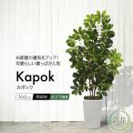 フェイクグリーン ナチュラル カポックツリー 160cm 斑入り(シェフレラ)) (人工観葉植物 光触媒対応 インテリア)