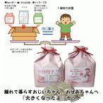 1歳の成長を実感 一升餅とお米で重さを表現 1歳お祝いセット 1歳(1才)の誕生日プレゼントに