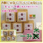 一升米 キューブ【コシヒカリ】 一歳の誕生日のお祝い 名入れ 一升餅 小分け おすそ分け 背負い餅