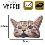 ワッペン 刺繍ワッペン 縦6.3cm×横9cm リアル ネコ ねこ 猫 キャット アイロン貼付け可能 ハンドメイド バッグやポーチオリジナルに アップリケ メール便