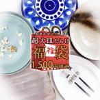 2枚で1000円ポッキリ 超大皿だらけ おまかせ 福袋 アウトレット込 陶器 食器 和食器 洋食器 大皿 特大皿 パーティー皿 オードブル皿