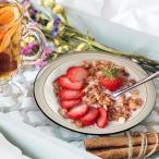 クラシックボウル 19.8cm アウトレット込 洋食器 日本製 美濃焼 陶器 深皿 ミニパスタ ミニカレー皿 サラダ皿 ボーダー おしゃれ 家カフェ レトロ ビンテージ