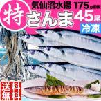 業務用さんま 特大 冷凍175g前後45尾 送料無料 お取り寄せグルメ  秋刀魚 サンマ 海鮮