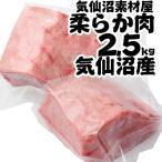 サメ 肉 2.5kg  唐揚 海鮮 ワニ さめ 鮫 もうか 毛鹿鮫 500g×(5p〜15p)