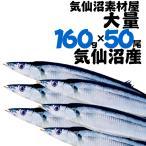 業務用さんま 大160g前後50尾  送料無料 気仙沼 秋刀魚 サンマ 海鮮