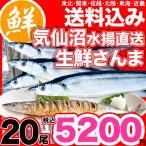 生さんま20尾 沖縄以外送料無料 お取り寄せ ご当地グルメ 気仙沼老舗仲買 秋刀魚 サンマ