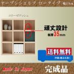本棚 008 ロータイプ 110cm幅 エリーゼアッシュ色 オープンシェルフ 完成品 日本製 フリーラック 収納家具 本収納 本棚 書棚 究極のシンプルデザイン