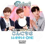 K-POP DVD/Wanna One こんにちは(2017.09.04)(日本語字幕あり)/ワナワン ダニエル ジフン デフィ ジェファン ソンウ ウジン グァンリン ジソン ミニョン..