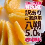 訳あり 生産量全国一位の和歌山県から産地直送 ご家庭用八朔(はっさく) 4〜5kg 送料無料