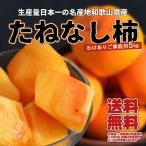 訳あり 種無し柿 5kg 和歌山産 ご家庭用 送料無料