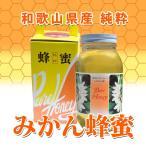 純粋みかん蜂蜜 特大瓶 1200g 前原養蜂園 和歌山県産ハチミツ