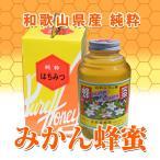 純粋みかん蜂蜜 特大瓶 2400g 前原養蜂園 和歌山県産ハチミツ