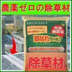 メーカー直送 除草剤 除草材 塩 園芸 園芸用品 除草 雑草対策 ガーデニング 332018