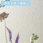 壁紙 のり付き のりつき クロス 国産壁紙  空気を洗う壁紙 和調 天井 木目 板目 あじろ 網代柄 ルノン RH-9238