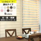 ロールスクリーン 調光 オーダー サイズ ロールカーテン 「幅25〜40cm×高さ20〜50cm」