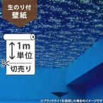 壁紙 のり付 クロス 生のり付き壁紙/サンゲツ 蓄光 RE-2865(販売単位1m)しっかり貼れる生のりタイプ(原状回復できません)