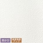 壁紙 生のり付き壁紙  切売り SSP-2112  1m単位で販売