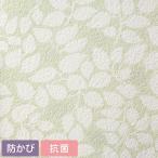 壁紙 サンプル A4サイズ メール便OK SSLP-385