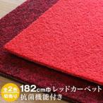 パンチカーペット シンコール サニーエース エコタイプ 182cm巾(切り売り)__182se-