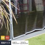 ビニールカーテン 制電・防炎  透明 糸無し 厚0.30mm HE-030B-A 既製サイズ 約180cm×200cm*HI-030B-A