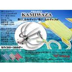 ※バレーヒル カミワザ  落とし込みギャフ  KAMIWAZA OTOSHIKOMI gaff  4996578661162