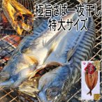 極旨サバ一夜干し 北海道広尾町加工 特大 さば干物