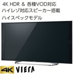 Panasonic  VIERA EX850 TH-49EX850 49.0インチ