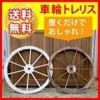 Yahoo!家電屋本舗住まいスタイル WT-80DBR 車輪トレリス (WT80DBR)