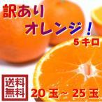 柑橘类 - 訳ありオレンジ 5キロ(20〜25玉)