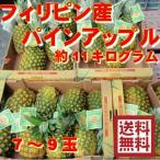 フィリピン産ゴールデンパインアップル 約11キロ(7〜9玉)