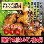 kadoyabokujou_k-horumon-500