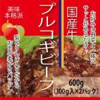 国産牛プルコギビーフ 600g (300g×2パック) 焼肉 バー