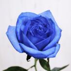 ブルーローズ 花束 アレンジメント 追加用オプション 青いバラ 生花