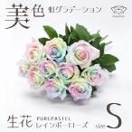 レインボーローズ ピュアパステル 花束 30本 フラワーギフト 生花 虹 バラ 安心のメーカー直販
