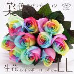 レインボーローズ ヴィヴィッド 花束 10本 フラワーギフト 生花 虹 バラ 安心のメーカー直販