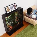 コレクションケース 飾り棚 コレクションラック 浅型 ロータイプ コレクションラック ガラスケース コレクションケース 飾り棚 飾り棚 ショーケース キュリオ