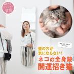 鏡 壁掛け 猫 猫家具 全身 姿見 かたち BIG 姿見